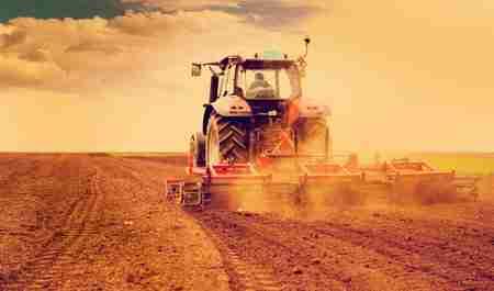 Agrismart agricultural solutions - Agribusiness - Professional web design