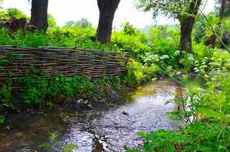 river health