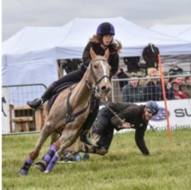 Thame Country Show - Agricultural Shows - Equestrian Shows